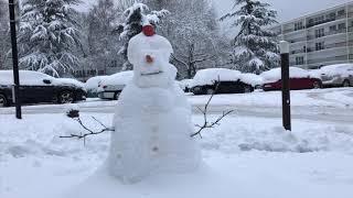 Les habitants se réveillent sous la neige (7 février 2018, Vélizy-Villacoublay, France)