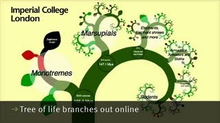 Tree of life branches out online
