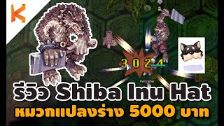 Ragnarok Online : รีวิว Black Shiba Inu Hat หมวกแปลงร่างบอสหมา Atroce ราคา  5000 บาท