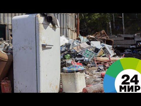 Мусорные баталии: мэрия Еревана взялась за очистку города от отходов