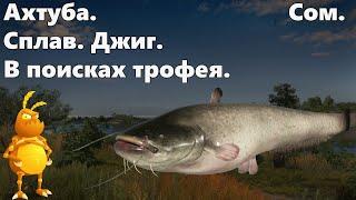Сом. Ахтуба. Фарм.  В поисках трофея.   [1440p] Русская рыбалка 4. Russian Fishing 4.