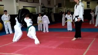Lex blast sparring a couple years ago 👍 Green/ Blue stripe