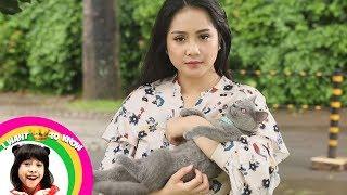 Awalnya Nagita Slavina Sayang Sayang kucing, Tapi Malah Digigit - I want To Know (17/12)