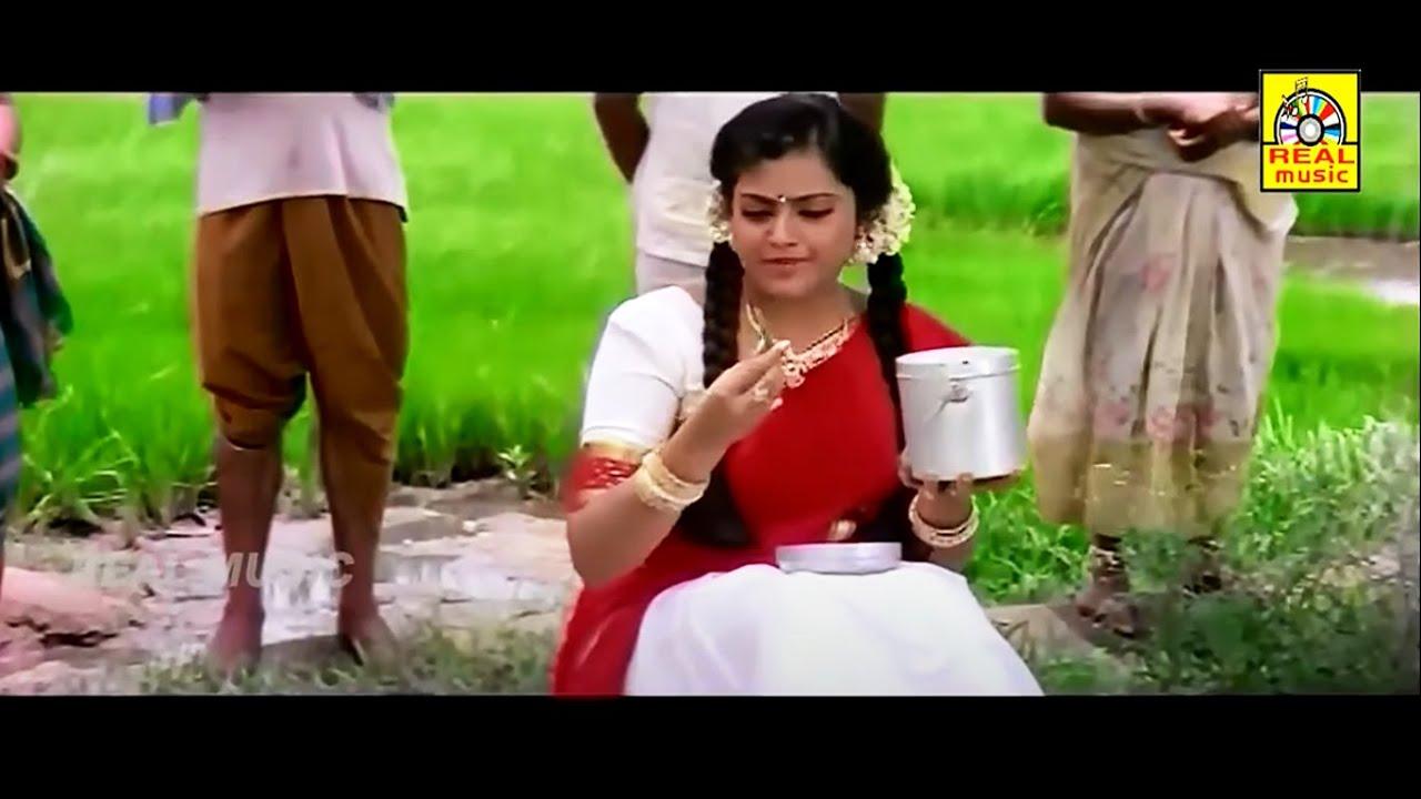Tamil Movie Super Scenes || Nagarjuna, Meena,Nagma Movie Scenes || Galatta Mapplilai Movie Scenes