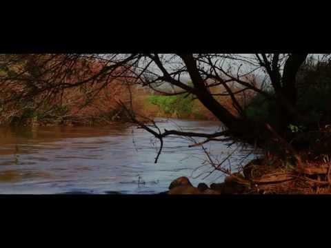 Клип Lucie Jones - The Ballad of Midsomer County