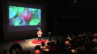 Biomimicry for better design | Andy Middleton | TEDxBedford