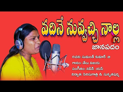 Vadine nuvvachinalla dj song