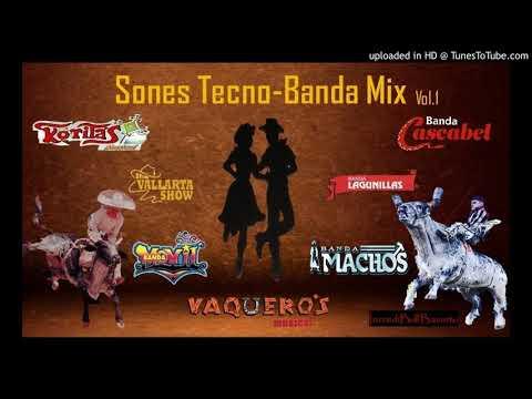 Mix De Sones ( Sones Techno-Banda Mix) Vol.1