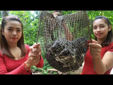 Yummy cooking frog fried recipe – Cooking skill