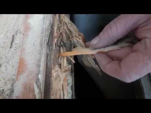 Fensterrahmen morsches Holz reparieren, repair rotten wood frame