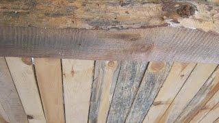 видео Как избавиться от плесени на потолке: профилактика и методики устранения