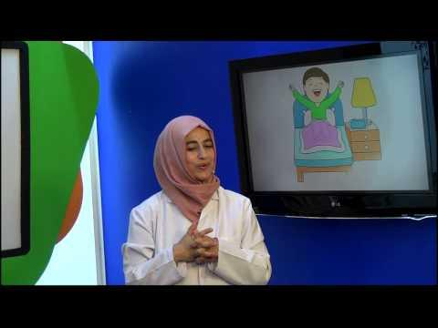 1. Sınıf Hayat Bilgisi Eğitim Seti (Hayat Bilgisi)