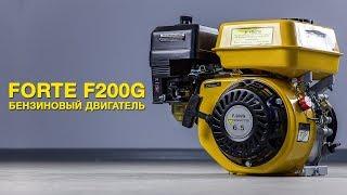 Обзор бензинового двигателя FORTE F200G