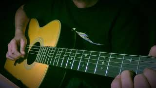 Brain Damage - Pink Floyd - Acoustic version (Roger Waters Cover)