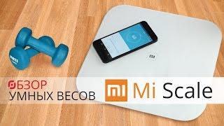 Обзор умных весов Xiaomi Smart Scales
