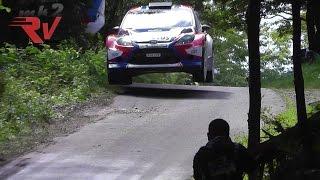 Robert Kubica Ford Fiesta WRC Best of 2014 Pure Sound