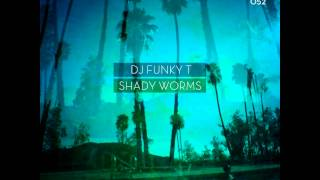 DJ Funky T - Shady Worms (DJ Aakmael Remix) - Deeper Shades Rec DEEP HOUSE MOODY