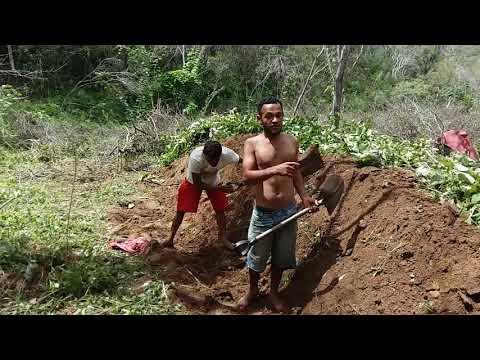 Eu e meus irmãos jogando terra em cima da carvoeira Piqueno ox