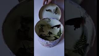 Живые бабочки в коробке