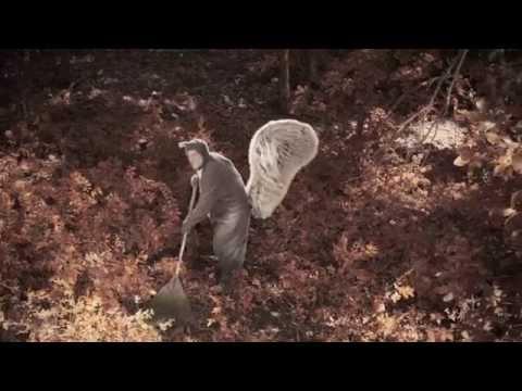 Squirrel Combat Video |  #WARONSQUIRRELS