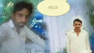 MUMTAZ MOLAl  Aldum 29 2019