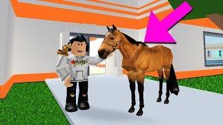HORSES ARE BEING ADDED INTO JAILBREAK!! (Roblox Jailbreak)