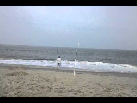 2015 surf fishing in delaware what kind of fi for Delaware surf fishing