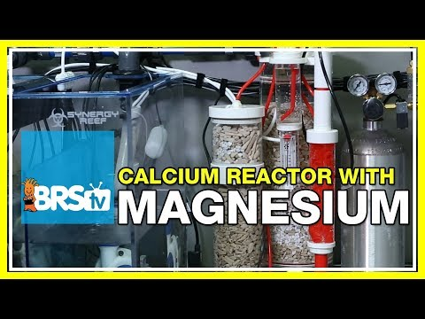 FAQ #2: Why Do I Supplement Magnesium While Running A Calcium Reactor? | 52 FAQ