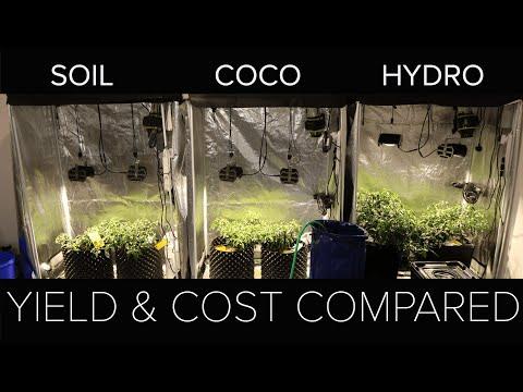 Soil vs Coco vs Hydro yield result & overall comparison