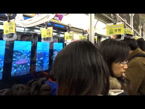 Ticket purchase and ride in Shanghai, China metro