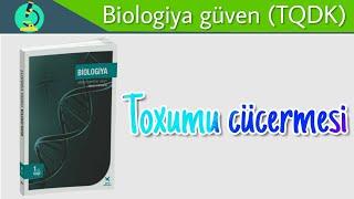 Biologiya dersi 26. Toxumun cücərməsi