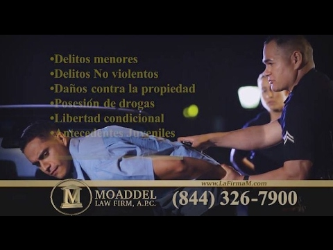 MOADDEL LAW FIRM COMMERCIAL