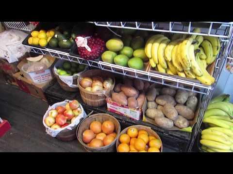 Global Scholars - Desert Foods