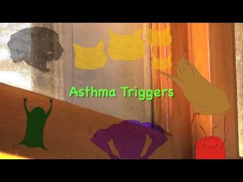 How Asthma Effects the Lungs and Asthma Triggers