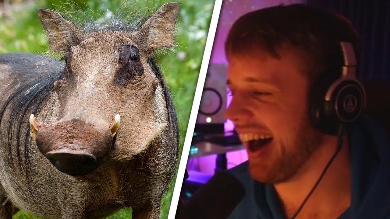 Misfits Share Weird Animals They've Eaten