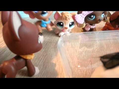 "LPS : ""Zakręceni"" #14 Littlest Pet Shop !"