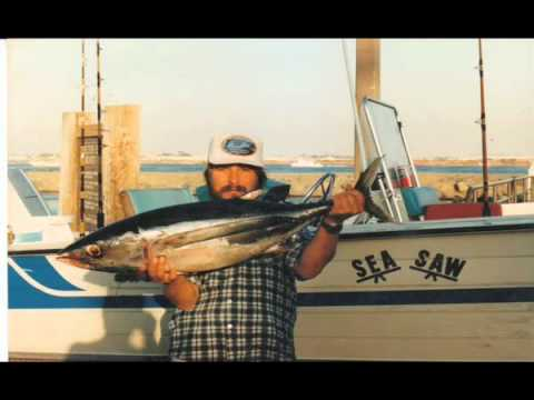 Fishing the coronado islands produced by louis bohan for Point loma fish counts