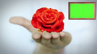 Download Video GREEN SCREEN HAND ROSE  2018 - FREE-HD MP3 3GP MP4