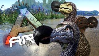 DODO EGG FARMING - Taming Dodo - ARK: Survival Evolved #6