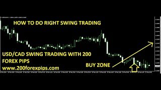 How to do Swing Trading with 200 Forex Pips trading indicators