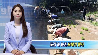 강북구 번동주공3단지, 자원 순환 위한 텃밭 모내기 행…
