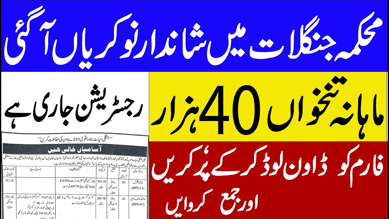 Forest and Wildlife Department Jobs 2020 ? Latest Jobs in pakistan