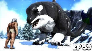 Taming the ENORMOUS ORCA-WOLF Hybrid! | AŔK Survival Evolved Jurassic #59