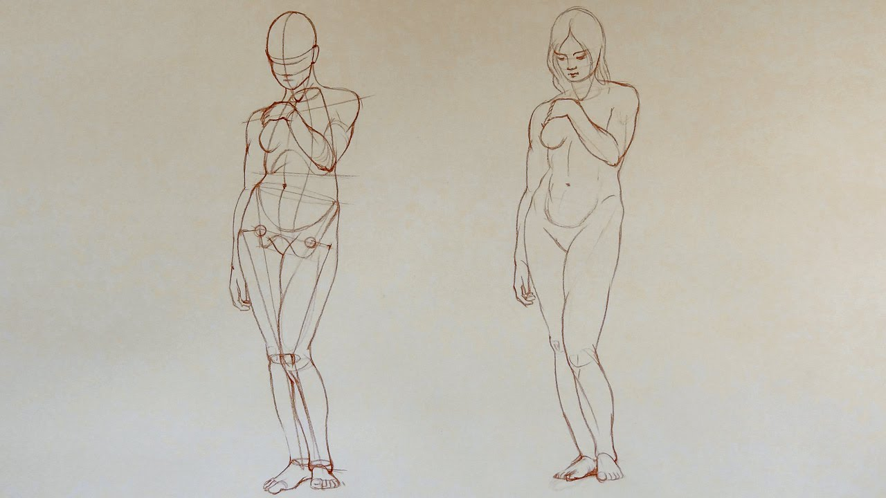 Female Anatomy - Anatomy Master Class - YouTube
