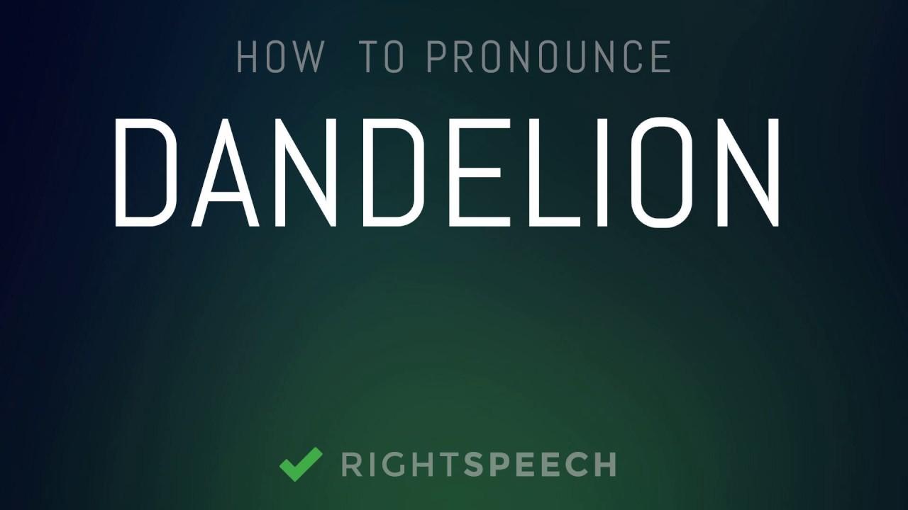Dandelion - How to pronounce Dandelion