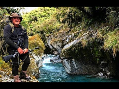 West Coast Chamois Hunting New Zealand