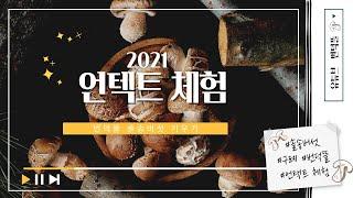 번덕뜰솔송버섯 키우기(집에서 쉽게 버섯을 키우는법) #…