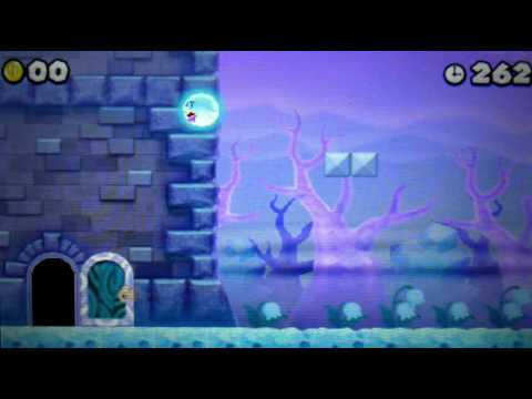 new super mario bros wii secrets