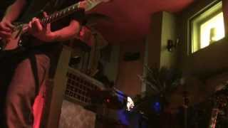 "The Screaming Fly-""astro""(new Track) Live @tikibar 02/01/2014"