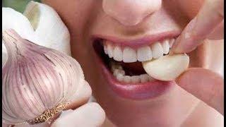 Чеснок - польза и вред для женщин и мужчин, лечение чесноком